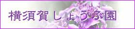 横須賀しょうぶ園ホームページ